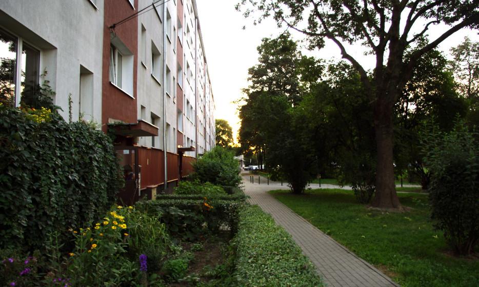 Mieszkanie na Biskupinie - Wrocław_1