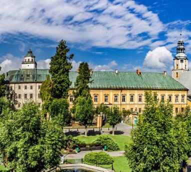 Zamek Międzylesie - rewitalizacja zespołu zamkowo-pałacowego projekt 2009 Adamiczka Consulting (ikona 01)